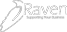 Raven Consultancy - Supporting Your Businesss